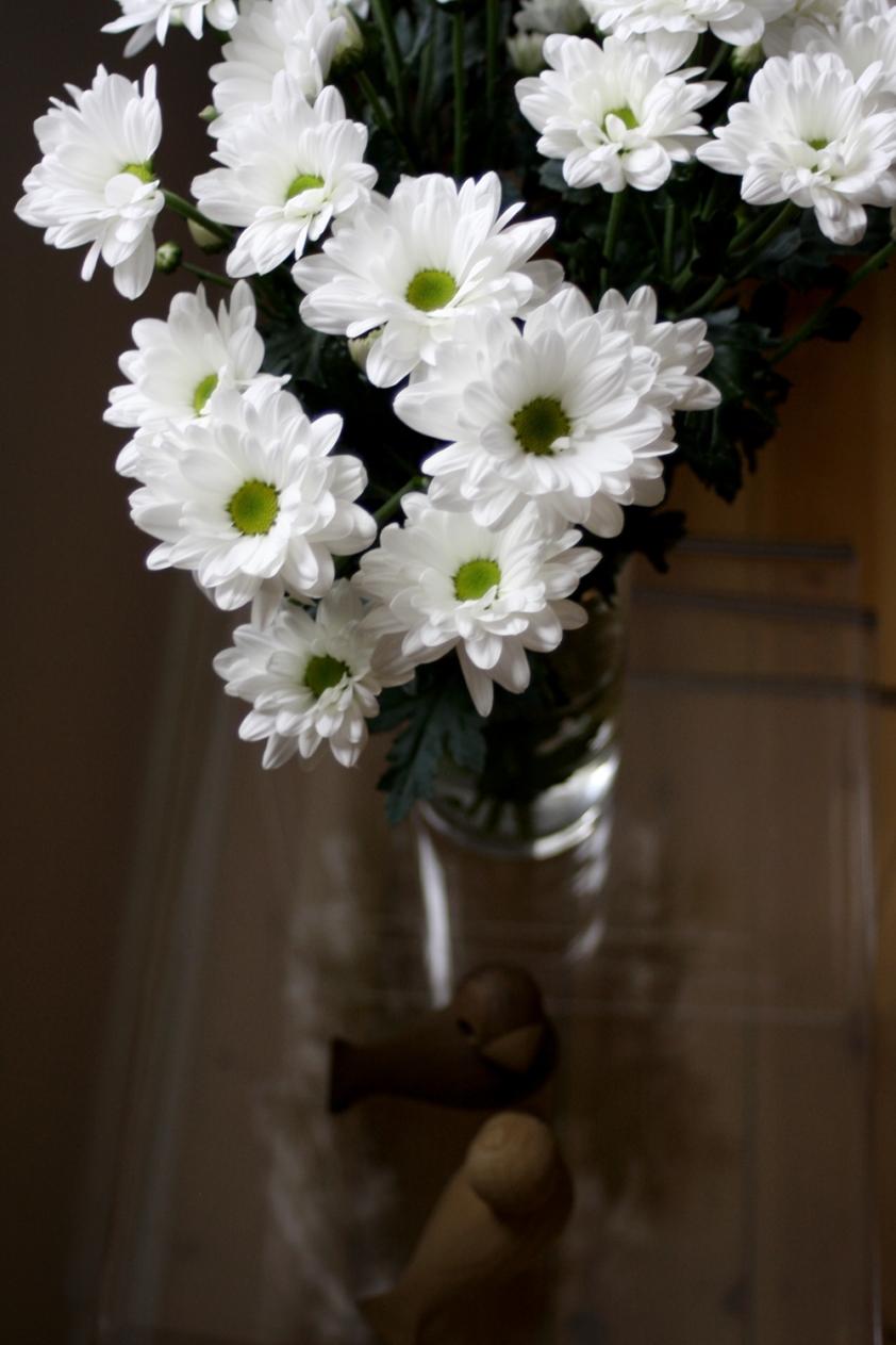 blomst-og-duer